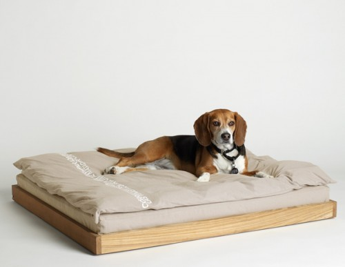 DOG_BED_NAT_L2A1